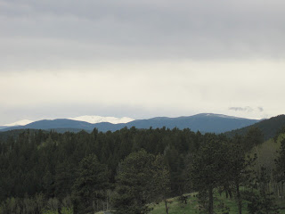 View of forest, distant mountains, and snow-covered peaks under layered gray skies in Colorado.