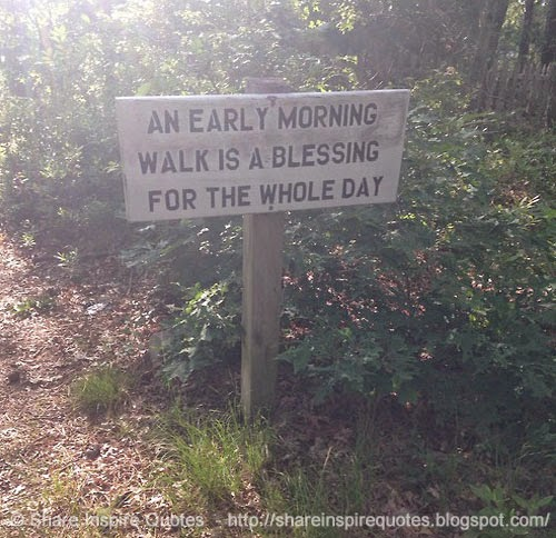 Early Morning Blessing Quotes: An Early Morning Walk Is A Blessing For The Whole Day