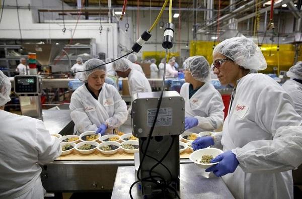 Tổ trưởng có trách nhiệm và nghĩa vụ đôn đốc, kiểm tra, giải quyết những vấn đề phát sinh trong quá trình sản xuất