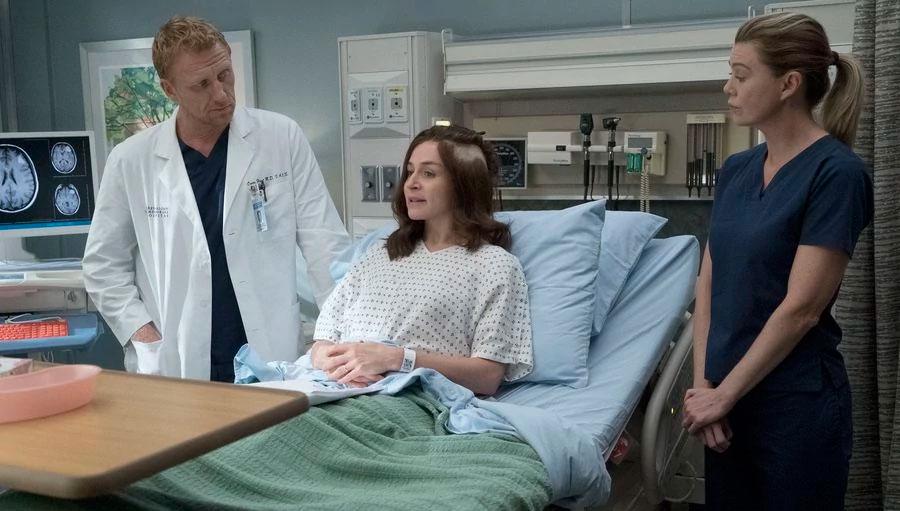 Grey's Anatomy 14x04 Ain't That a Kick in the Head Amelia Owen Meredith