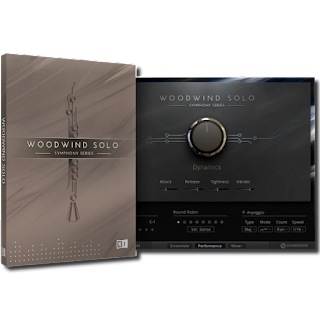 Native Instruments - Symphony Series Woodwind Solo