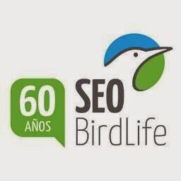 Logo de SEO/Birdlife