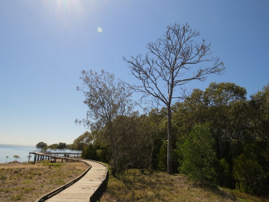 Tabbil-ban dhagun boardwalk at Boondall Wetlands