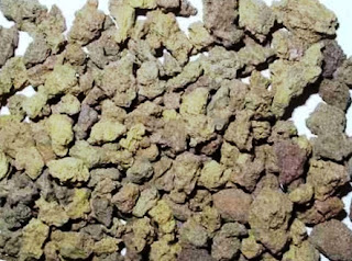 Pozzolanic Chemistry in Cement
