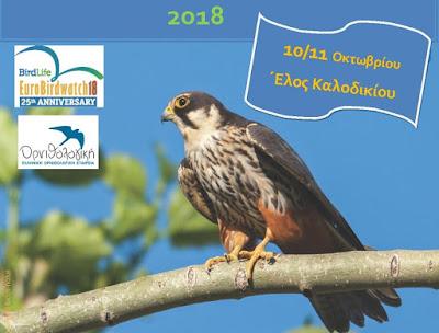 9η Γιορτή Πουλιών στο Έλος Καλοδικίου (+ΒΙΝΤΕΟ)