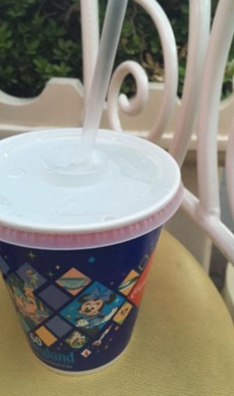 Can I Bring Food Into Disneyland