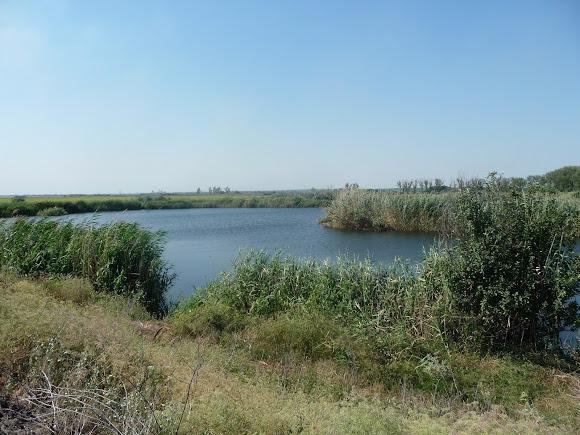 Река Волчья. Приток Самары