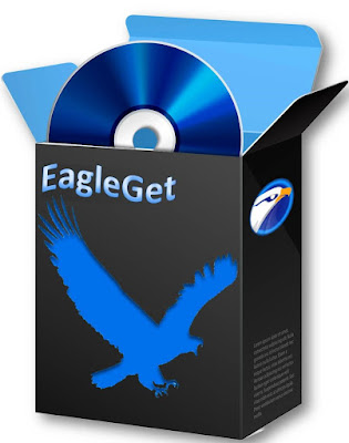 http://dl.eagleget.com/latest/eagleget_setup.exe