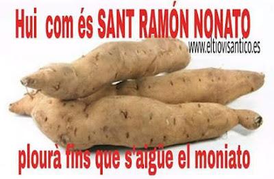 Hui , com és sant Ramón Nonato , plourà fins que s'aigüe el moniato
