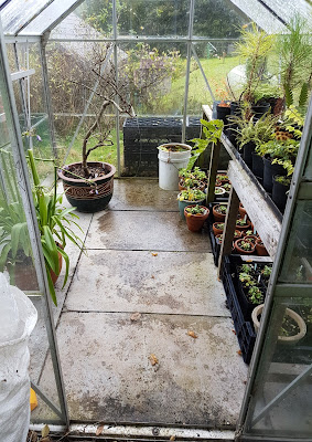 The wee greenhouse tidied and  ready for wrapping