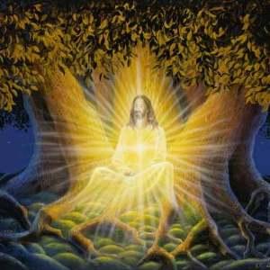 The Hara Dimension: Hara Meditation download - page 12