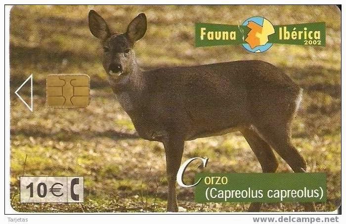 Tarjeta telefónica Corzo (Capreolus capreolus)