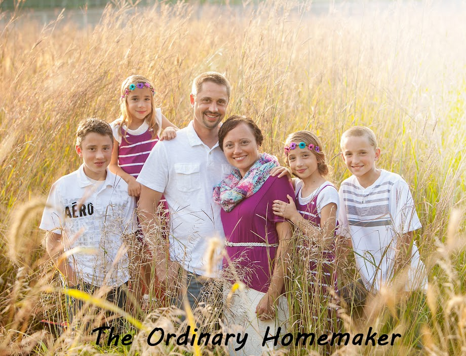 The Ordinary Homemaker
