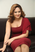 nikisha patel new sizzling photos gallery-thumbnail-11