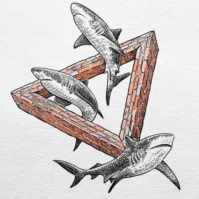 10-Sharks-Diana-Sofia-Animal-Drawings-www-designstack-co