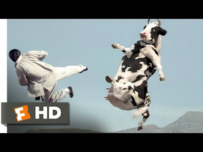 Cow Fight مانگا شەڕ دەكات Comedi
