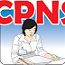Penerimaan CPNS Telah Dibuka 2017 Semua Provinsi