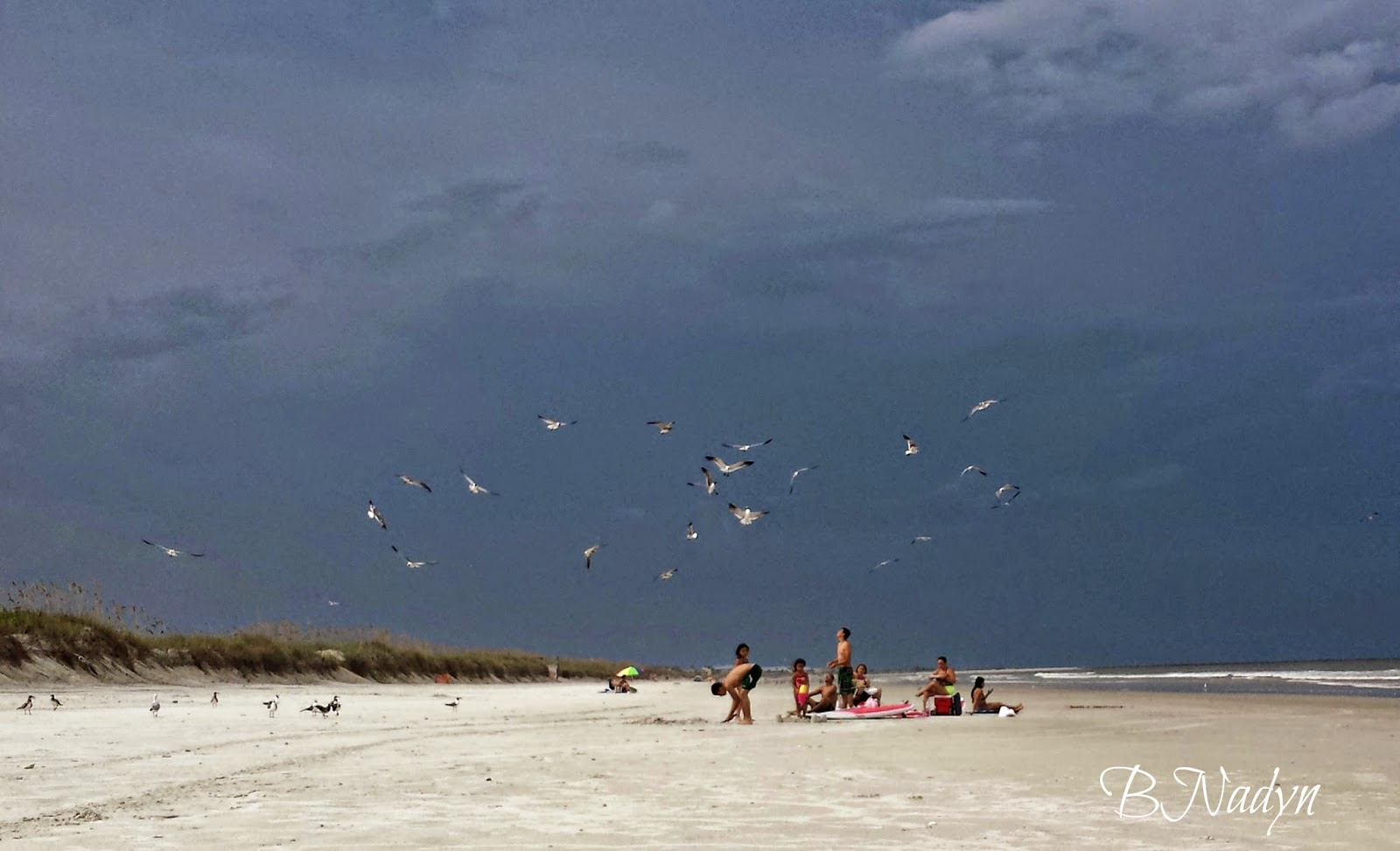 summer, jacksonville, wordless wednesday