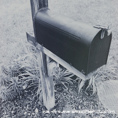 black & white photo of a metal mailbox in a bed of flowers