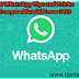 10 WhatsApp Tips and Tricks Everyone Should Know 2019
