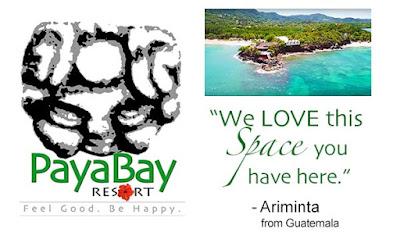 client feedback, quotes, magic of paya, #payabay, #payabayresort, paya bay resort, good energy,