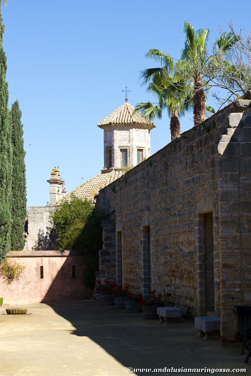 Jerez Alcazar 19
