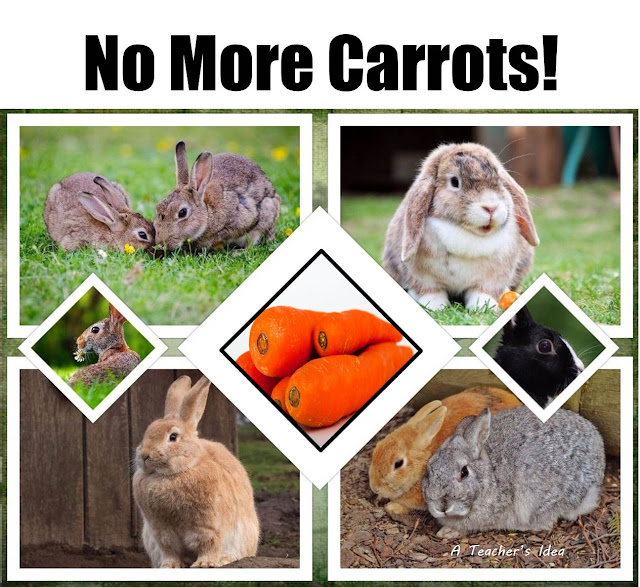 Rabbits do not eat only carrots
