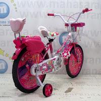 18 sepeda anak perempuan exotic