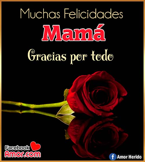 rosa para mamá
