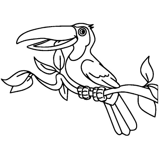 Mewarnai Gambar Dua Anak Burung Aneka Mewarnai Gambar