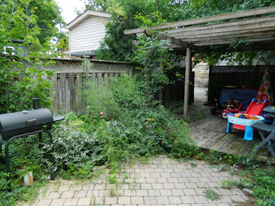 Playter Estates Toronto backyard clean up before by Paul Jung Gardening Services