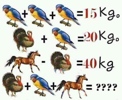Animals Math Equation Image Puzzle