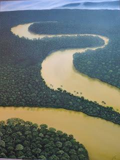 Pintores-paisajistas-Colombianos, Jorge Marin Rio Amazonas