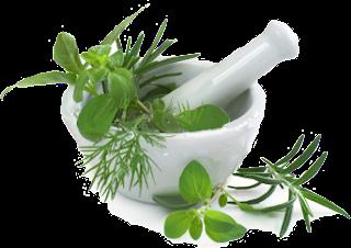 Jual Obat Herbal Gatal Eksim Selangkangan Di Apotik
