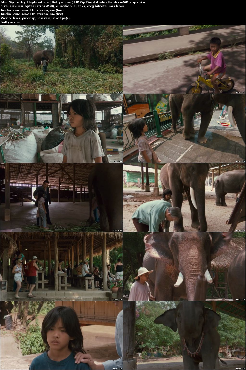 My Lucky Elephant 2013 HDRip 700MB Hindi Dual Audio 720p Download