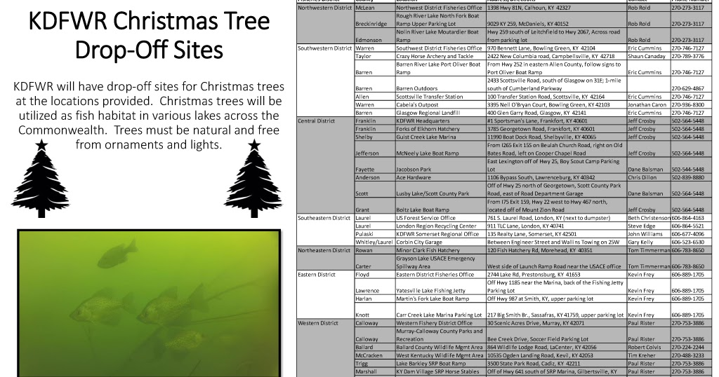 The press online after holiday use for christmas trees for Kentucky fish and wildlife phone number