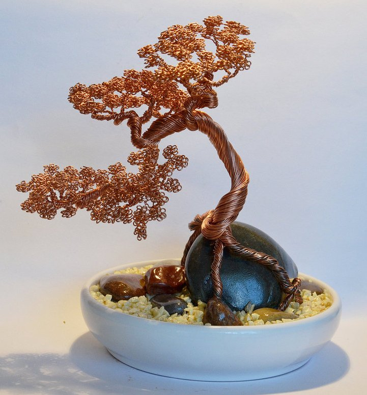 apa itu bonsai kawat bokat bonsai dari kawat rh bonsaidarikawat blogspot com Bonsai Wiring Tips Bonsai Shapes