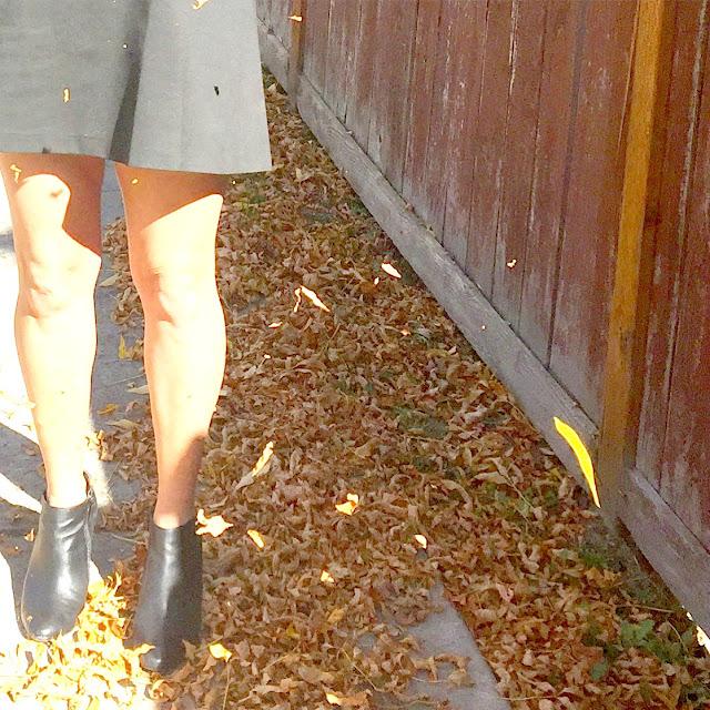 bcbg a fabulous fall frock