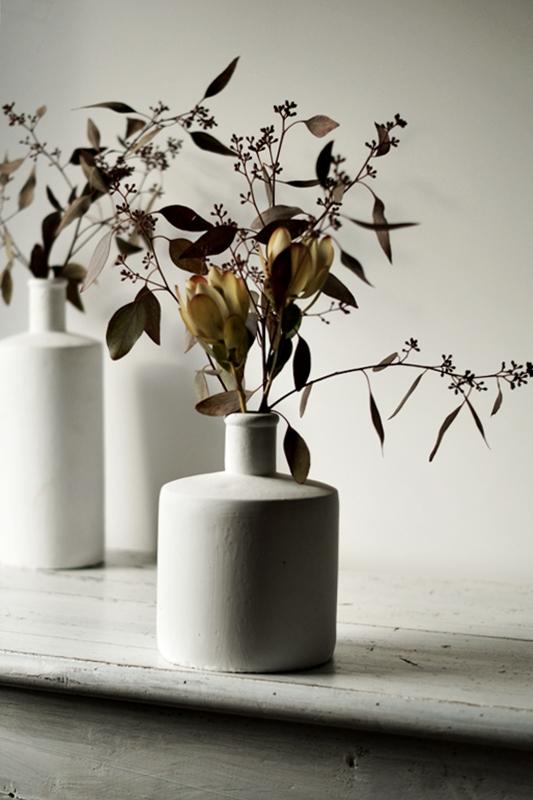 Blog + Fotografie by it's me! - Eukalyptus + Protea mit Eukalyptuszweigen im Hintergrund