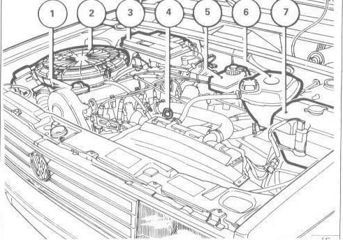 Manuales de mecánica y taller: Volkswagen Amazon Voyage
