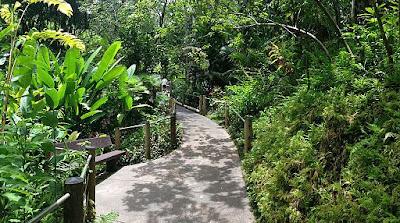 Gambar Taman Gaya Tropis
