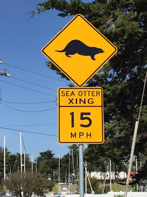 A road sign, yellow diamond with black shape of a sea otter on it, below a 15 mile per hour speed limit.