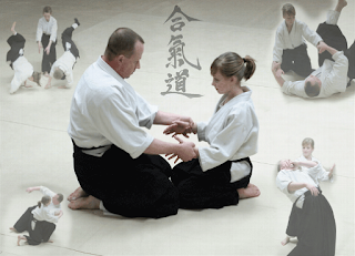 Aikido, Asian culture, artpreneure, nintaistudiosaikido