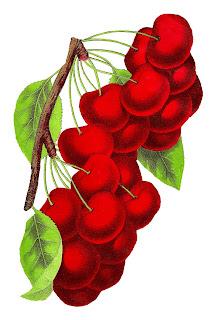 https://4.bp.blogspot.com/-_OwciEAM_Wo/WvsBlhDy_BI/AAAAAAAAi28/Mn4PEl6cGy8an_ahPxasr6ExIv3R6A28wCLcBGAs/s320/cherries-fruit-image-1870-001-2.jpg