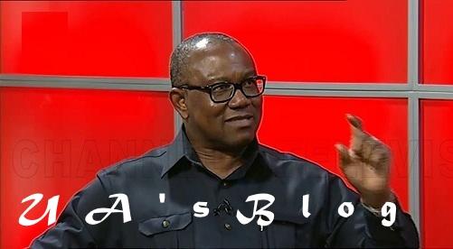2019: I'm Contesting To Build A Better Nigeria – Peter Obi