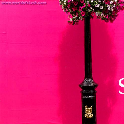 20 Hot Pink Bedrooms Design Ideas
