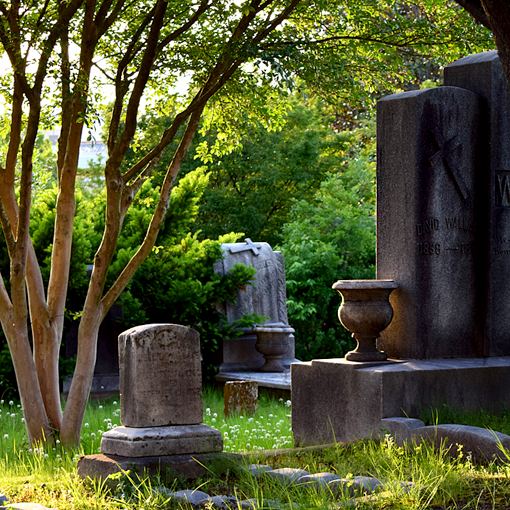 Photography Workshop at Historic Oakland Cemetery | Photo: Travis S. Taylor