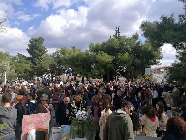 Δ. Σφυρής: Η γιορτή της ελιάς σηματοδοτεί την ελαιοπαραγωγική  δυναμική της Ερμιονίδας στην Πελοπόννησο και την Ελλάδα