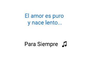 Para Siempre Pipe Calderón Shako Significado de la Canción.