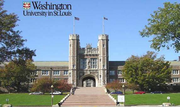 Top online universities in usa
